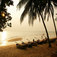 Pattaya People
